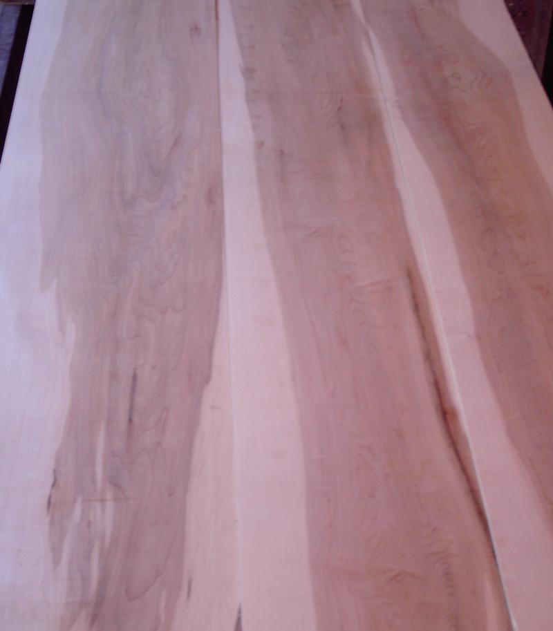 site index forestry mature hardwood maple
